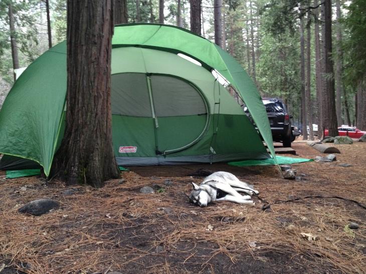 Yosemite Hikes_0007