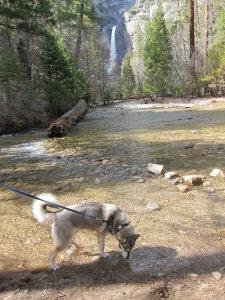 Yosemite_SpringBreak_0357
