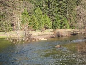 Yosemite_SpringBreak_0390