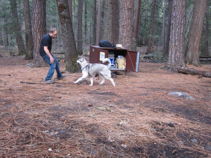 Yosemite_SpringBreak_0398