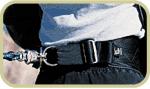 skijoring belt