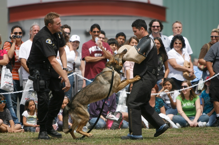 Pet-Expo-Police-Dogs-Demonstration