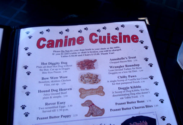 Dog Friendly Restaurant Review Park Bench Cafe