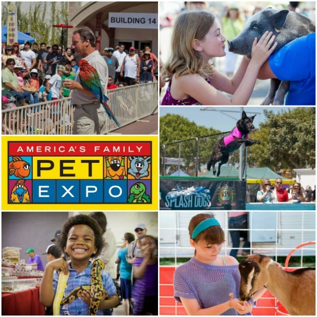 Americans-Family-Pet-Expo-Orange-County-2015-e1460212074570